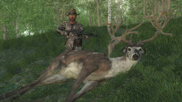 BuckshotAl non typical piebald WT