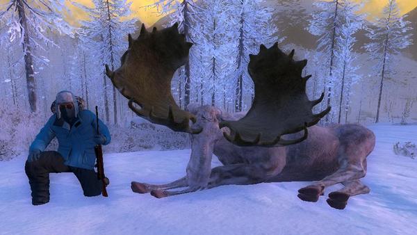 Oskar4358 albino moose 219