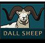 Dall sheep badge