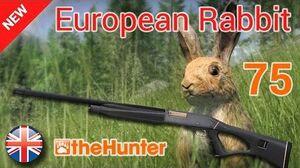 Let´s Play theHunter 2015 - 1080p 60FPS - HWP 75 - European Rabbit - 1 2 - EN