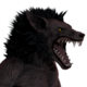 Werewolf male common