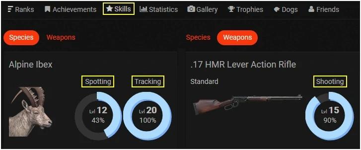 PlayerSkills