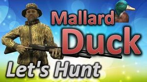TheHunter Let's Hunt DUCKS