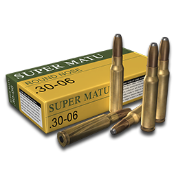 Cartridges 3006 round nose