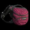 Dog backpack valentines