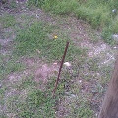 The pole that almost killed Mike