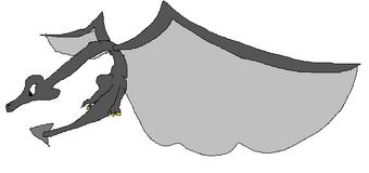 Black Wyvern