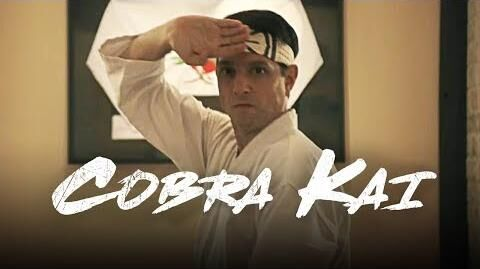 Cobra Kai Official Teaser Trailer 3 (Karate Kid) - Sensei Daniel