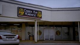 Cobra kai 2018