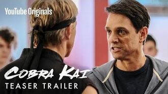 First Look Cobra Kai Season 2 Official Teaser