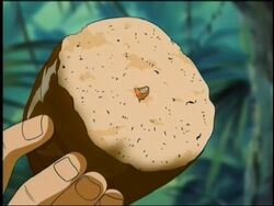Poison Bread at Graveyard Island (Anime)