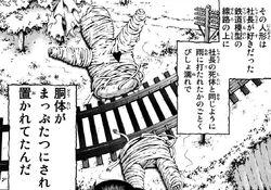 Seiryu Himatsuri's Voodoo Doll (Manga)