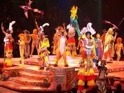 Festival-of-the-lion-king-