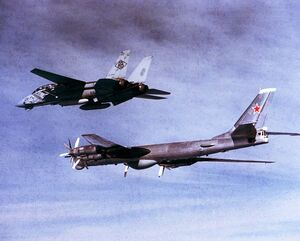 F-14 Combat with Tupolev Tu-95 Bear