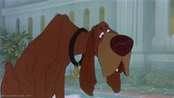Tramp-disneyscreencaps com-2337