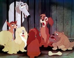 Pound Dogs  The lady and the tramp Wiki  FANDOM powered by Wikia