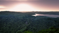Amazon rainforest.png