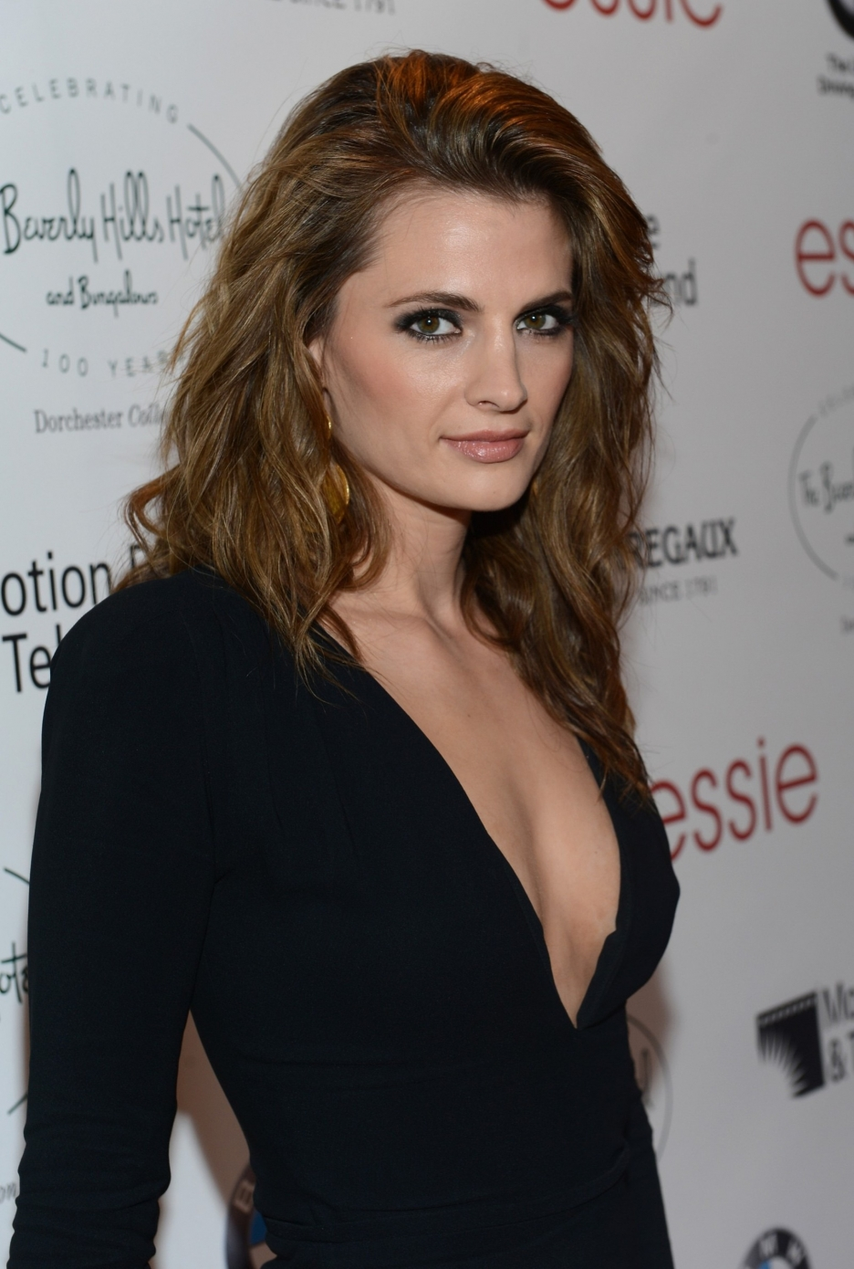 Bikini Stana Katic nudes (28 foto and video), Topless, Sideboobs, Instagram, swimsuit 2017