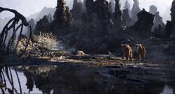 Elephant Graveyard 2019
