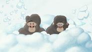 The-lost-gorillas (384)