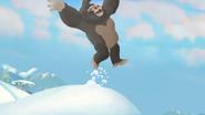 The-lost-gorillas (407)