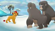 The-lost-gorillas (459)