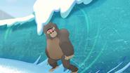 The-lost-gorillas (429)