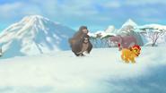 The-lost-gorillas (389)