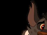 Kucha's Clan
