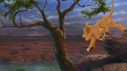 Lion-king2-disneyscreencaps-1080