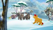The-lost-gorillas (393)
