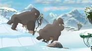 The-lost-gorillas (403)