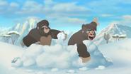 The-lost-gorillas (374)