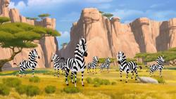 Thurston's Herd