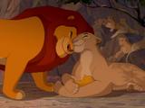 Simba's Pride/Gallery