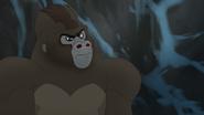The-lost-gorillas (472)