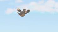 The-lost-gorillas (422)