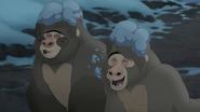 The-lost-gorillas (476)