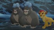 The-lost-gorillas (480)