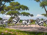 Dhahabu's Herd/Gallery