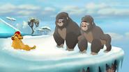 The-lost-gorillas (456)