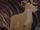 Zira (Scar's Pride)
