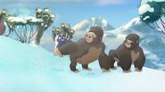 The-lost-gorillas (400)