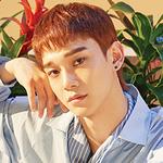 Profile-Chen