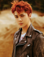 Sehun (Don't Mess Up My Tempo) 4