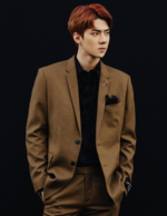 Sehun (Don't Mess Up My Tempo) 6