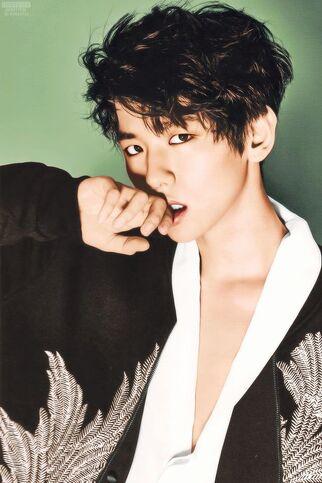 49bb8bc6992d6c95bfc95d7a864a0355--baekhyun-photoshoot-exo-magazine-photoshoot