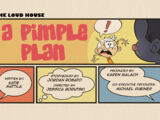 A Pimple Plan