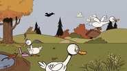 S4E09A All the ducks are flying south