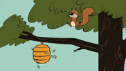 S4E03A Squirrel knocks down a bee hive